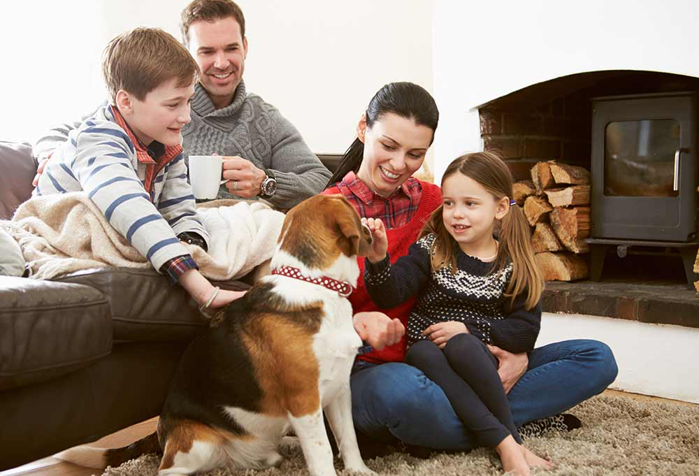 DSS Tenants are less favourable than pets to landlords
